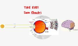 5th Chadri Vision