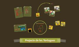 Projecte de les Tortugues