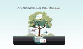Periodismo Multimedia en la Ciberdemocracia