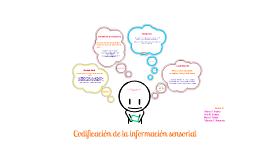 Codificación de la información sensorial