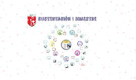 Copy of Sustentación I Bimestre