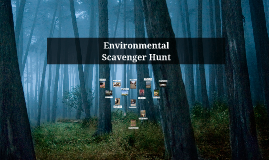 Environmental Photo Essay