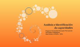 Análisis e Identificación de capacidades