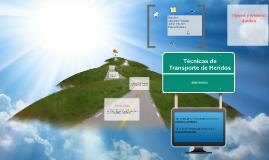 Copy of Copy of Técnicas de Transporte de Heridos