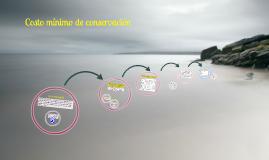 Copy of Copy of Copy of COSTO MINIMO DE CONSERVACION