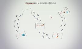 Planeación de la carrera profesional