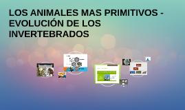 LOS ANIMALES MAS PRIMITIVOS - EVOLUCIÓN DE LOS INVERTEBRADOS