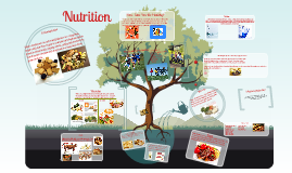 Health Nutrition Project