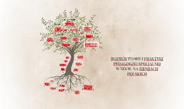 Rozwój teorii i praktyki Pedagogiki Specjalnej w XIX wieku n
