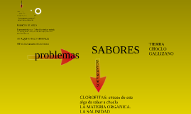 Copy of MANEJO DEL CULTIVO DE CAMARON