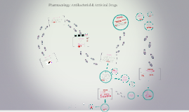 Pharmacology: Antibacterial & Antiviral Drugs