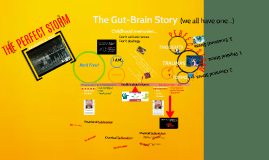 The Gut-Brain Axis
