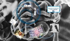 MSc Molecular medicine