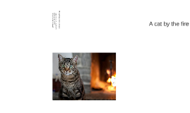 Zoom Levels Sample - A Cat by the Fire