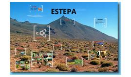 Copy of ESTEPA