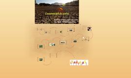 Copy of Prácticas de conservación de suelos