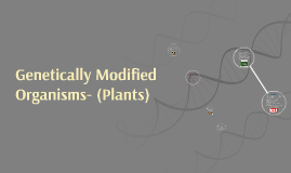 Genetically Modified Organisms- (Plants)