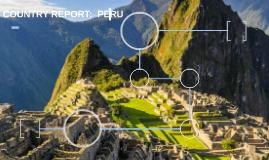 COUNTRY REPORT:  PERU
