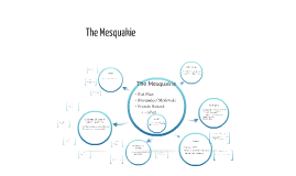 The Mesquakie