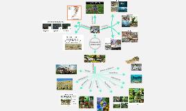 Población Y Comunidad