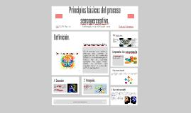 Principios basicos del proceso sensoperceptivo.