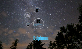 Delphinus