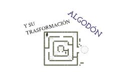 Algodon