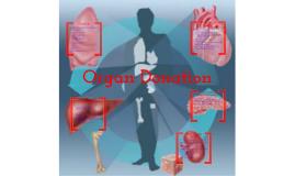 Copy of Organ Donation