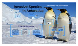 Invasive Species in the Antarctic