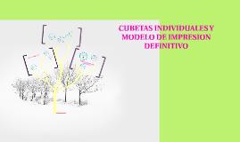 Copy of CUBETAS INDIVIDUALES Y MODELOS IMPRESIÓN DEFINITIVOS