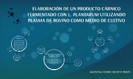 ELABORACIÓN DE UN PRODUCTO CÁRNICO FERMENTADO CON L. PLANTAR