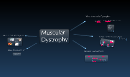 Child Health: Muscular Dystrophy