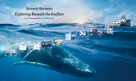 Seismic Surveys: