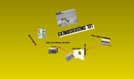 SKIMBOARDING 101