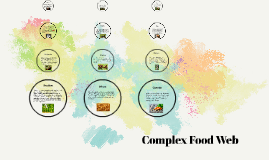 Complex food Web