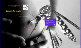Copy of dENGUE nEONATAL