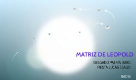 Copy of MATRIZ DE LEOPOLD