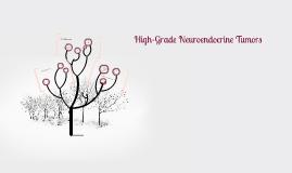 High-Grade Neuroendocrine Tumors