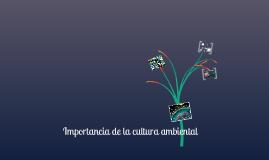 IMPORTANCIA DE LA CULTURA AMBIENTAL