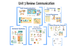 AP Unit 3 Review: Cell Communication