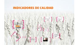 Copy of INDICADORES DE CALIDAD EN ENFERMERIA