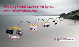 Film Study: Eternal Sunshine of the Spotless Mind