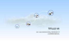TITULO VII
