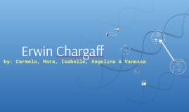 Erwin Chargaff : Biology 12U