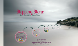 Stepping Stone For Healthy Sncaking