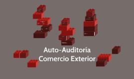 Auto-Auditoría Comercio Exterior