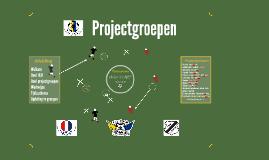 GRUBLIT-CF Projectgroepen