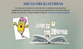 AREAS OBLIGATORIAS