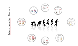 Vergleich Mensch - Menschenaffe