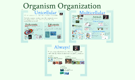 Copy of AP Bio- Interactions 1: Organism Organization